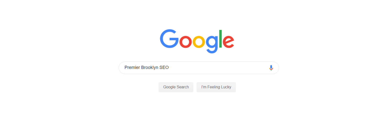 premier-brooklyn-seo-google-search-box